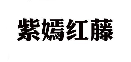 紫嫣红藤ZY·HT品牌折扣女装尾货批发_女装批发